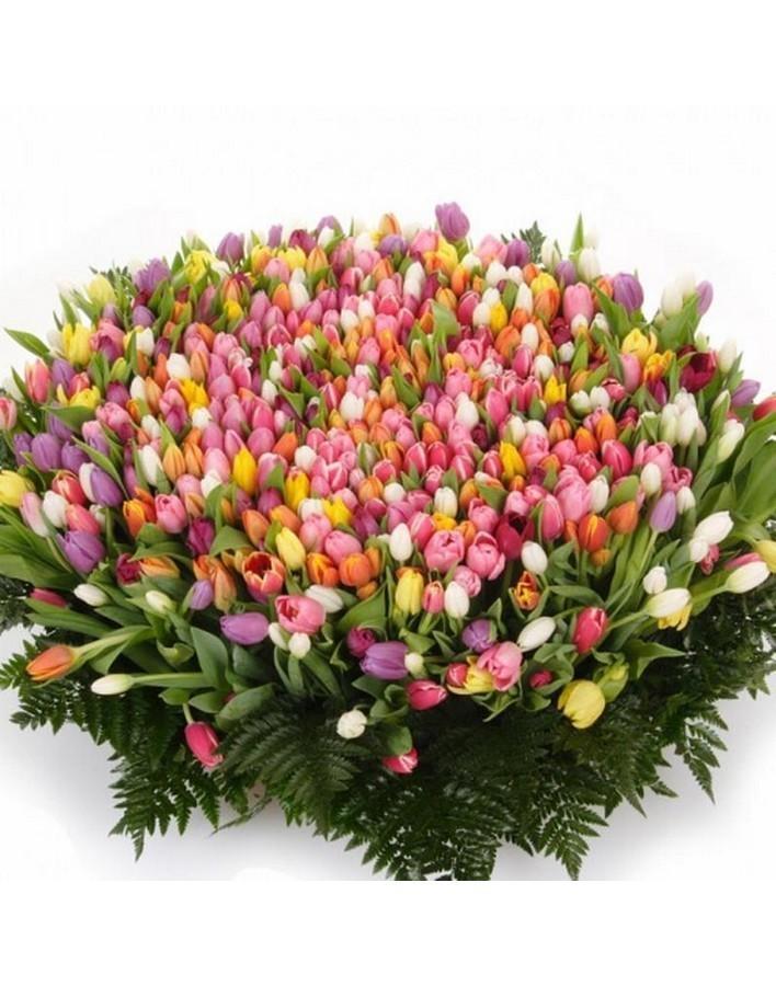 Огромный букет тюльпанов гифка